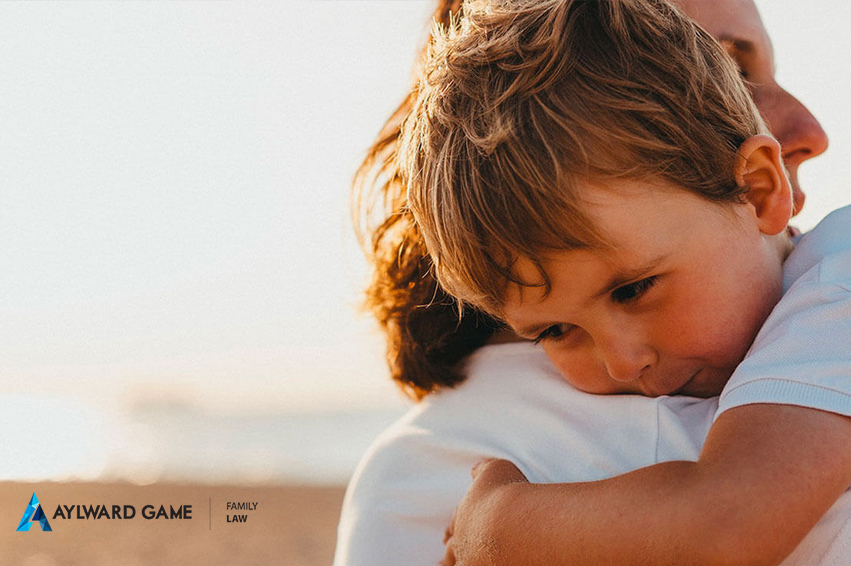 Child Custody Application and Sole Parental Responsibility